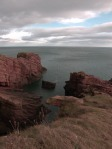 Seaton Cliffs II